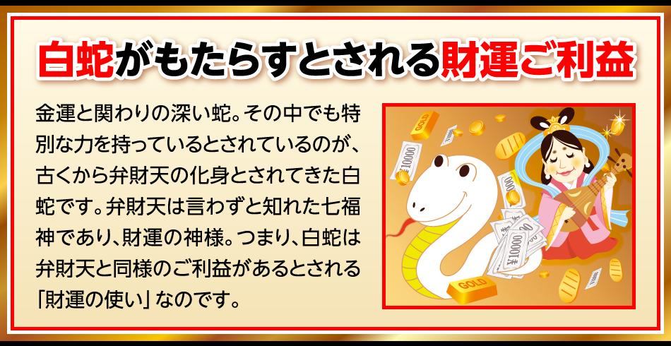 白蛇がもたらすとされる財運ご利益:金運と関わりの深い蛇。その中でも特別な力を持っているとされているのが、古くから弁財天の化身とされてきた白蛇です。弁財天は言わずと知れた七福神であり、財運の神様。つまり、白蛇は弁財天と同様のご利益があるとされる「財運の使い」なのです。