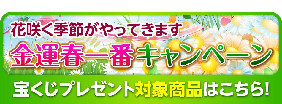金運春一番キャンペーン 2月27日まで開催中