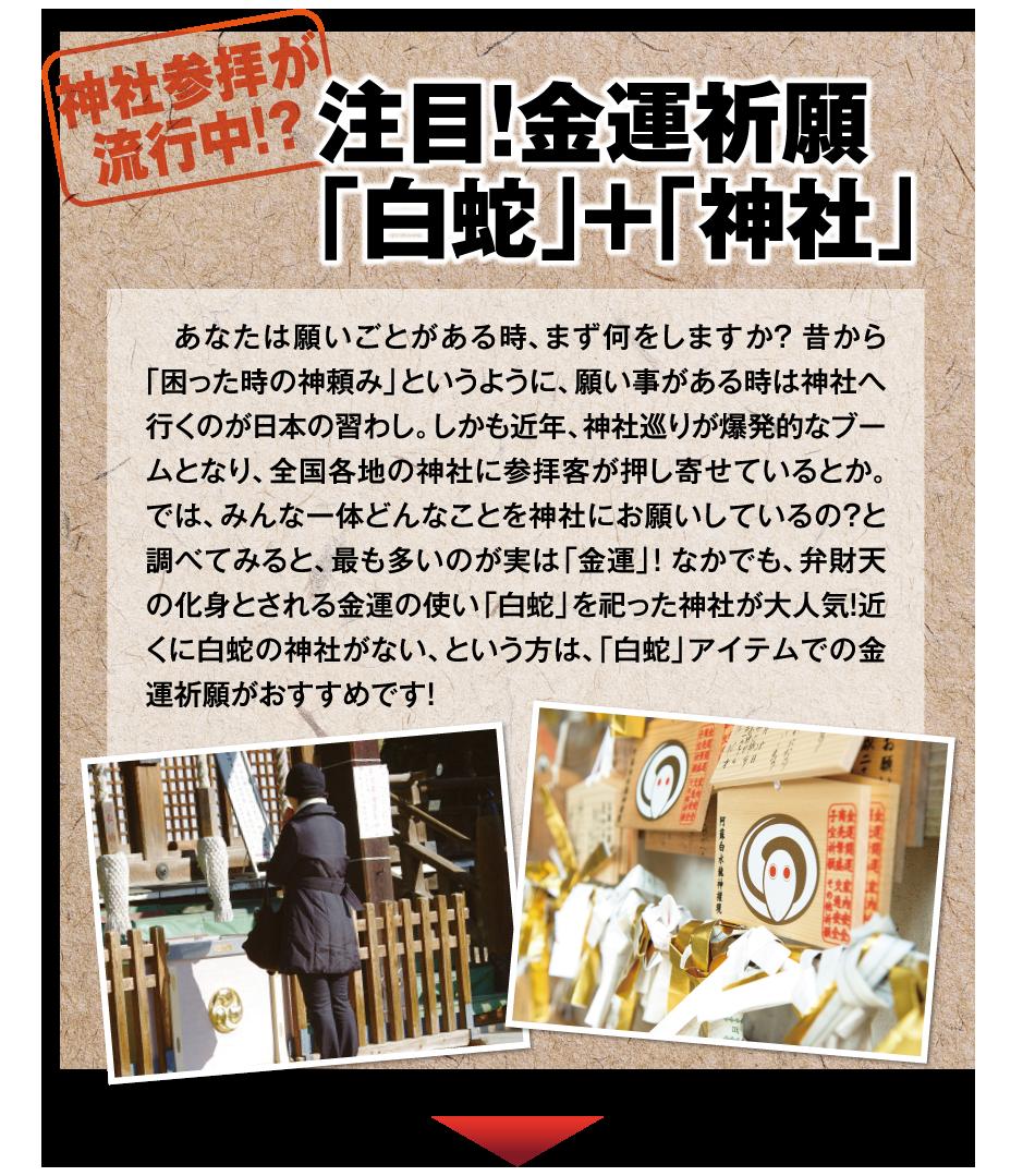 注目!金運祈願「白蛇」+「神社」